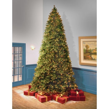 """Costco: 3.65 m (12 ft.) – """"Feel-Real"""" Bayberry Spruce Hinged Tree with Soft White LED Lights"""