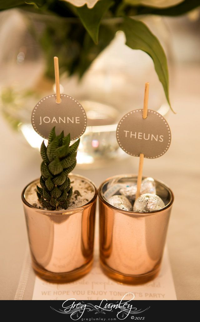 Cute name places using cacti at wedding ceremony at at Cavalli Stud Farm in Somerset West, Western Cape South Africa.