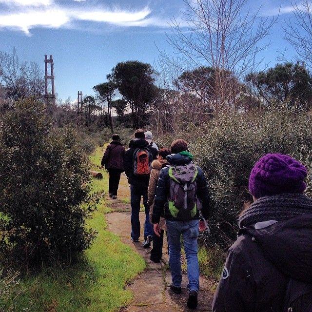 #ferrovia #elettrica #Pisa #Marina #Tirrenia #Calambrone #Livorno una tratta da ripristinare #ferroviedimenticate