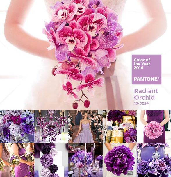 112 best Flowers By The Shelbourne. Wedding flowers and floral ...