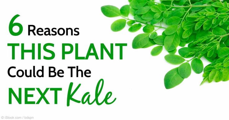 Moringa has anti-diabetic, anti-inflammatory, cholesterol-lowering, and cardioprotective properties, and is loaded with vitamins, minerals, and antioxidants. http://articles.mercola.com/sites/articles/archive/2015/08/24/moringa-tree-uses.aspx