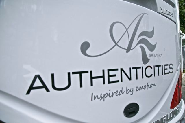 our elegant logo standing out