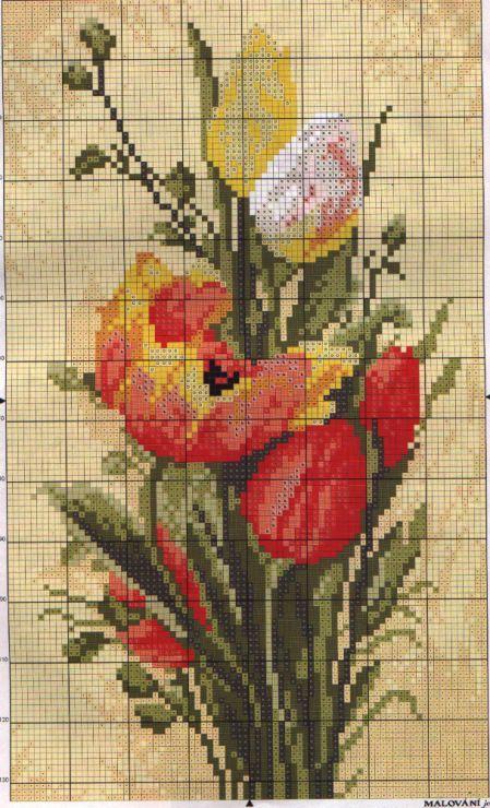 Gallery.ru / Фото #2 - tulipanki - halla