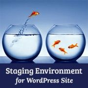How to Create Staging Environment for a WordPress Site:  tutorial showing you how to build a website before having it go live.   If I host a shop on my blog, this might be the way to go.