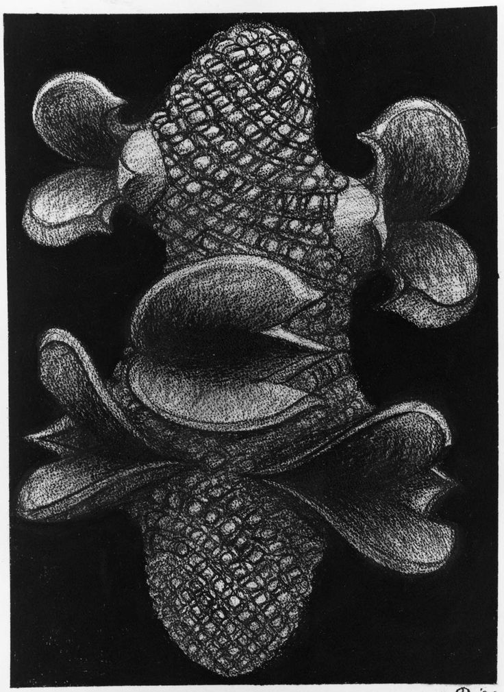 Peter Randall-Page, She-oak cone, 1994, charcoal, 77 x 55 cm