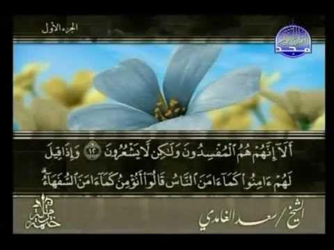 SURAH AL BAQARAH HOLY QURAN RECITATION 6