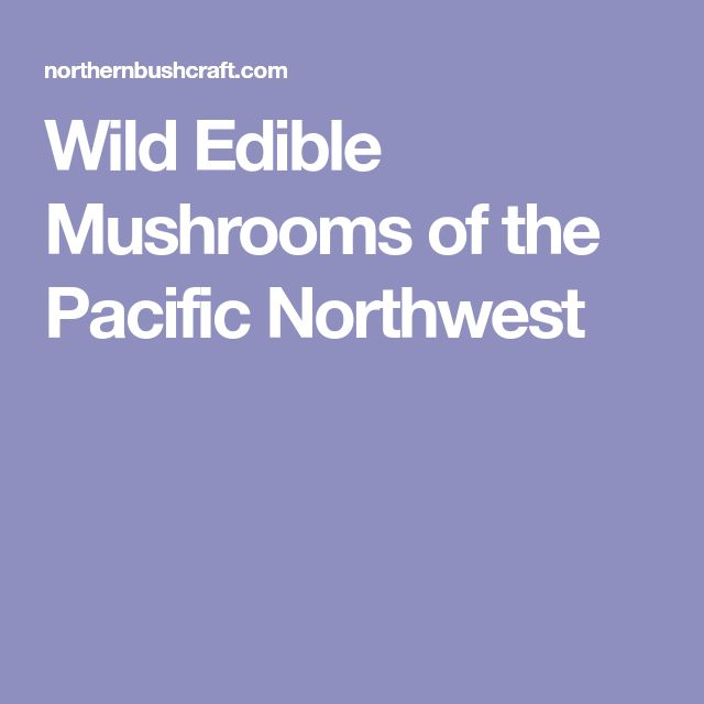 Wild Edible Mushrooms of the Pacific Northwest