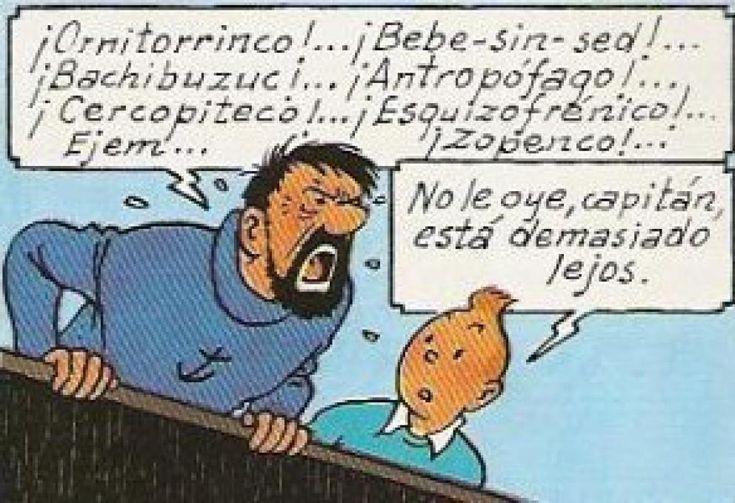 10 insultos españoles que debes utilizar más