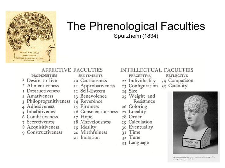 principles of phrenology - Google Search