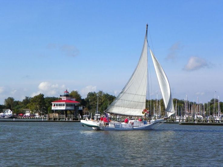 Record number of vessels expected for Choptank Heritage Skipjack Race