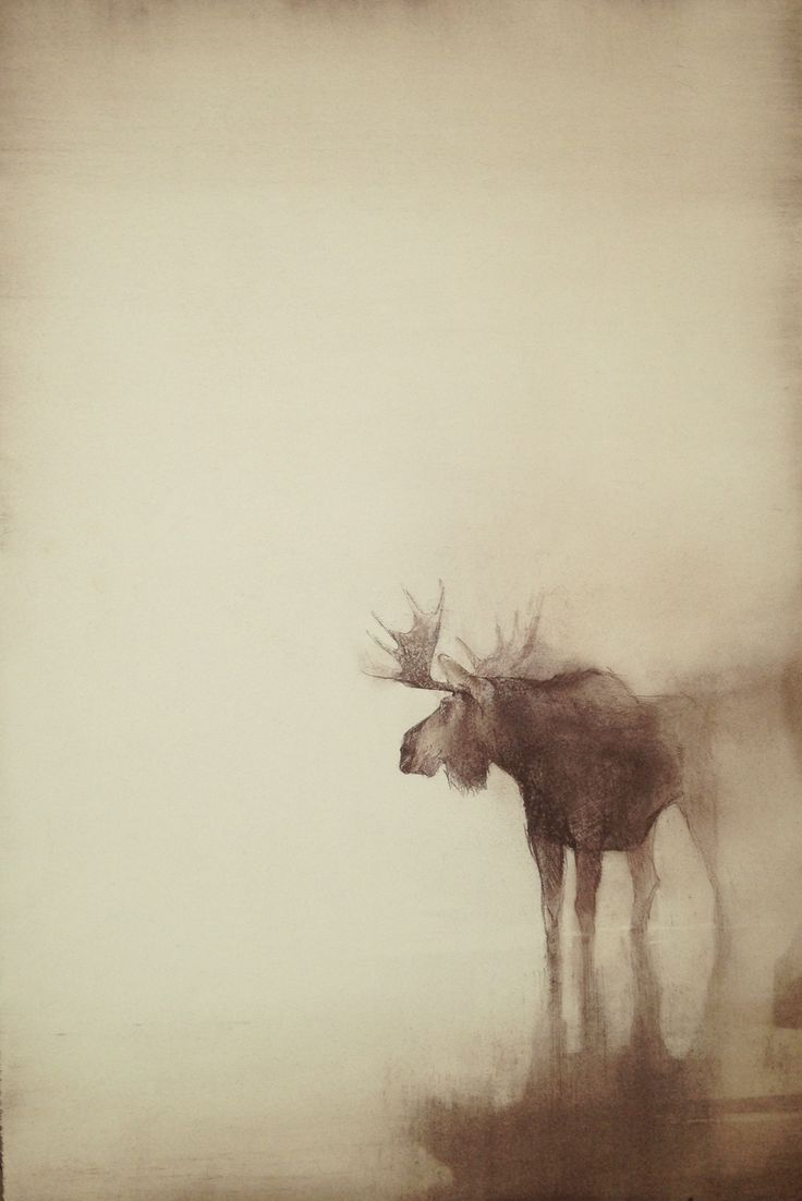 """""""Wonder"""" 22 x 14 conte on arches by Kathryn Mapes Turner. 