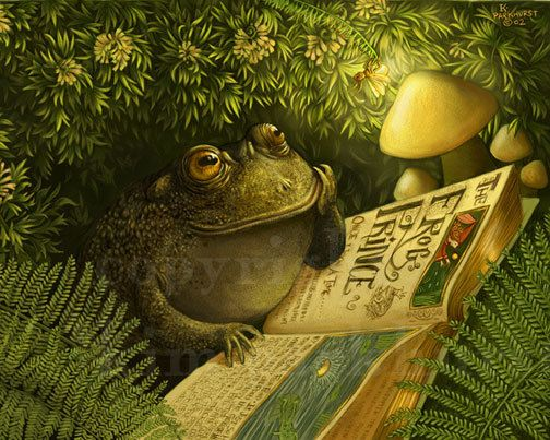 Cozy Fairy Tale Thank You Toad Firefly Signed Print by toadbriar, $22.00