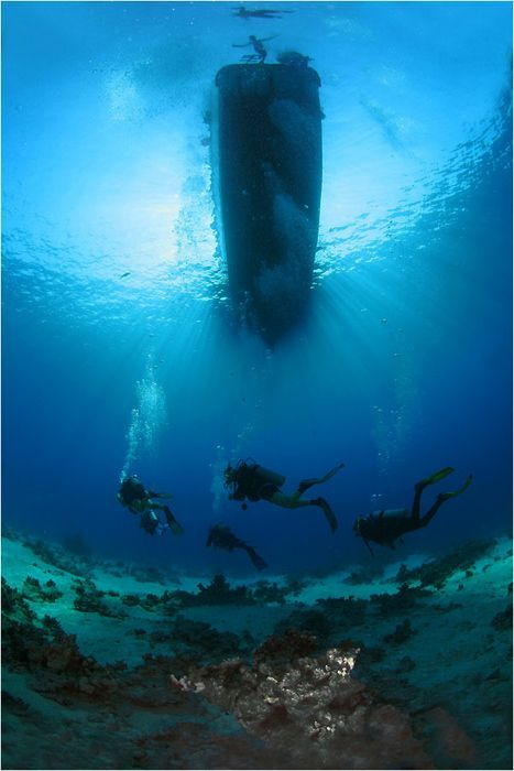 Underwater Shipwreck Tattoo 970 best images about ...