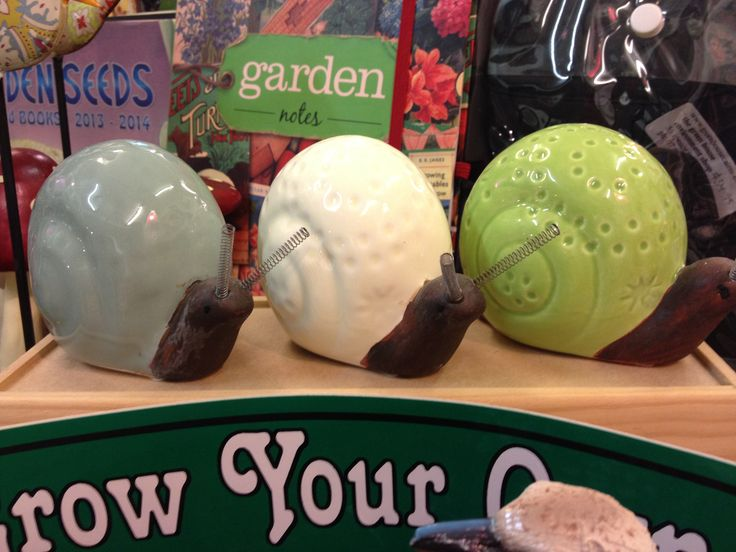 Scare snails - perfect for the garden to scare away the little munchers!