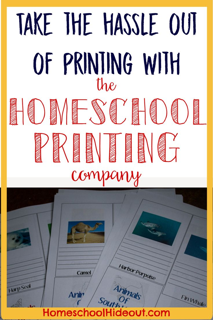 1044 best Notebooking for Homeschool images on Pinterest ...