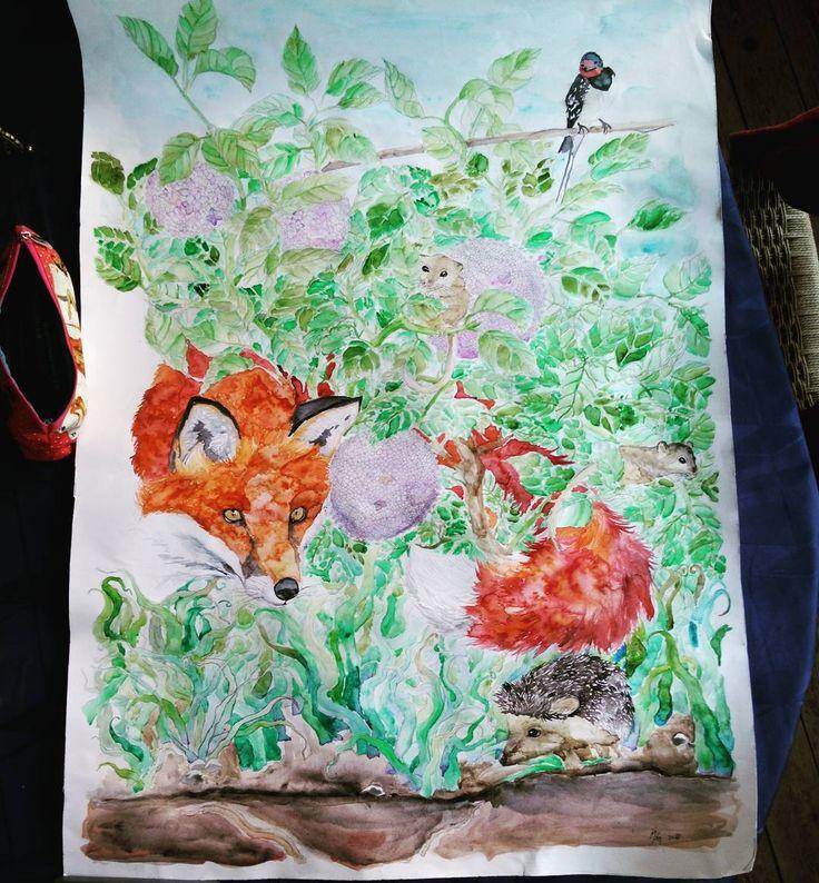 """In my backyard #myartist #art #share_art #share_artist#share_artist #share_repost_tag_sharetheword_and_thankyou #myartwork #beautiful #love_this #animal…"""