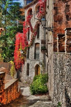 old stone & flowering vines