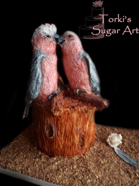 Groom's cake _ Galahs happy in love, via Flickr.