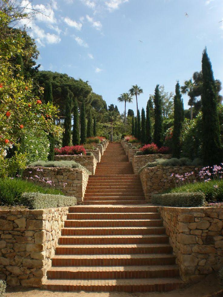 1000 images about botanical garden jardines botanicos for Le jardin catalan