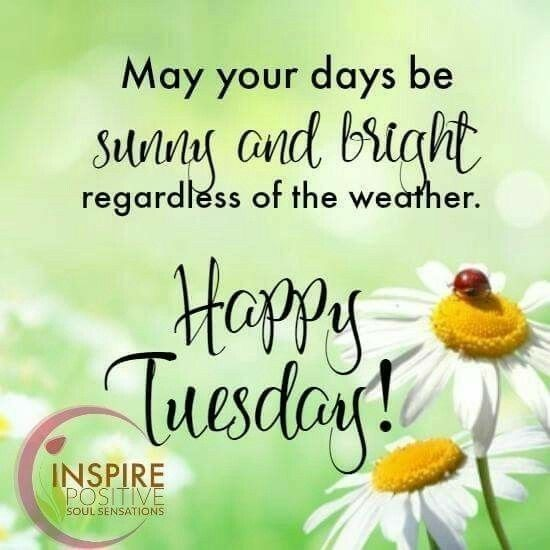 90 best tuesday greetings images on pinterest tuesday greetings find this pin and more on tuesday greetings by sandra simmons m4hsunfo
