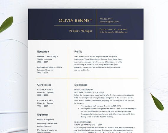 43 best Resume Examples and Templates for MS Word images on Pinterest - microsoft resume templates 2018