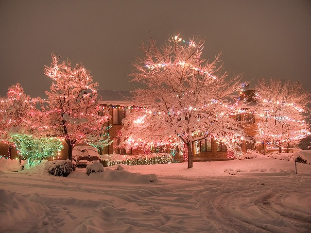 308 best Holiday Lights images on Pinterest | Christmas time ...