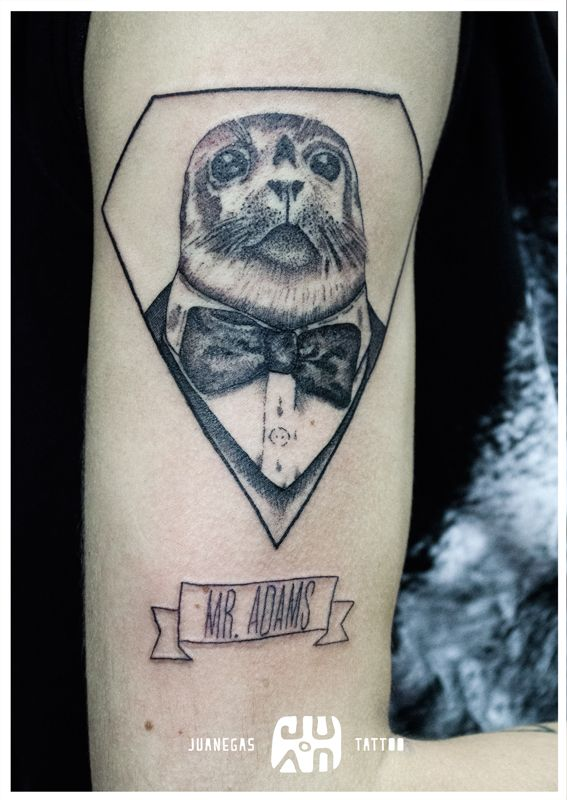 MR. ADAMS, foca elegante, puntillismo y whipshading