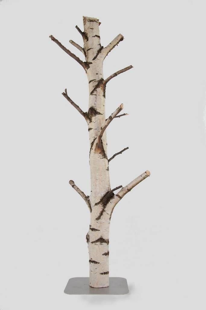Naturel takken-stammen-houtschijven : 1 Berken stam met zijtakken op voet 2.3 m