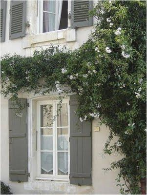 roses on the wall: Colors Combos, Shutters Colors, Modern Country, Climbing Rose, Flowers Vines, Exterior Colors, Grey Houses, Interiors Gardens, Houses Exterior