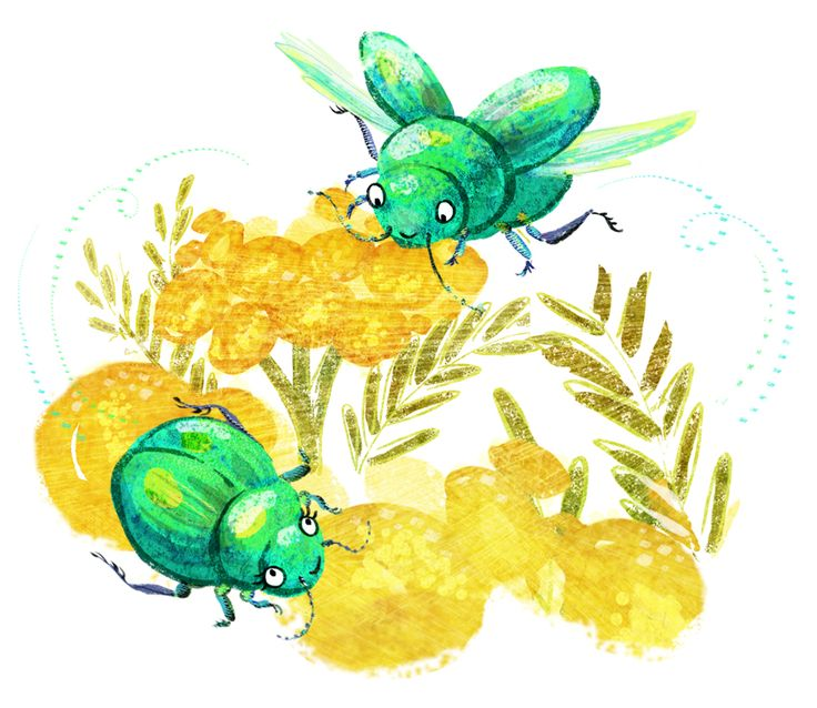 This #rare Tansy #beetle really rarely flies ;) A little #fun for #animalalphabets on twitter. #kidlitart #illustration #cute #flying #pollinator