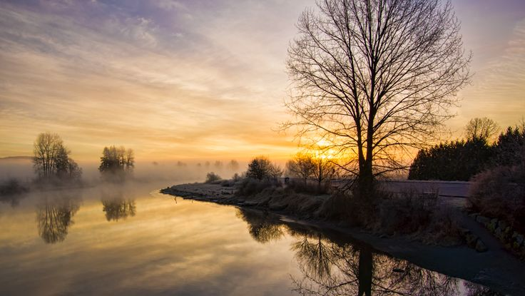 Taken on a cold January morning as the fog rose above the bending river.  Location: The Dikes, Pitt Meadows, British Columbia, Canada