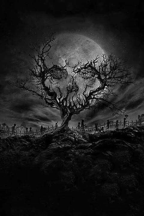 branch skull skeletons pinterest the moon perception and graveyards. Black Bedroom Furniture Sets. Home Design Ideas