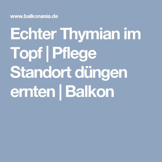 Echter Thymian im Topf | Pflege Standort düngen ernten | Balkon