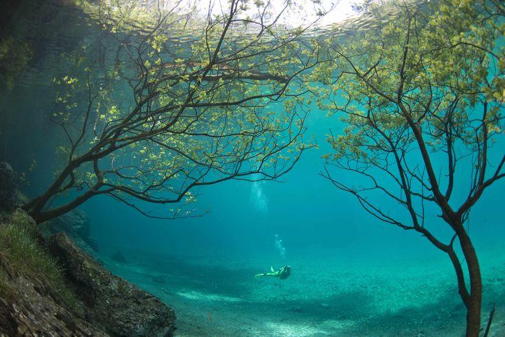 Het natuurgebied in de Oostenrijkse regio Tragoß ondergaat elk half jaar een complete metamorfose: iedere zomer verandert het park in een duikparadijs.