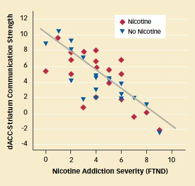 Nicotine Addiction Linked With Weak Communication in Circuit: Smokers with greater dependence on nicotine, as evidenced by higher scores on the Fagerström Test for Nicotine Dependence (FTND), demonstrated weaker communication in a brain circuit connecting the dorsal anterior cingulate cortex (dACC) and the striatum. Communication strength was similar with and without a nicotine patch, suggesting that this circuit is unresponsive to the medication.