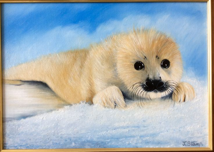 Baby Seal. Oil Paints on board.36x25cm. By J Stamp. Gateshead Artist. £150. Email.stampjeffrey45@gmail.com
