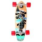 Skate Gold Coast Longboard Blues Shovel
