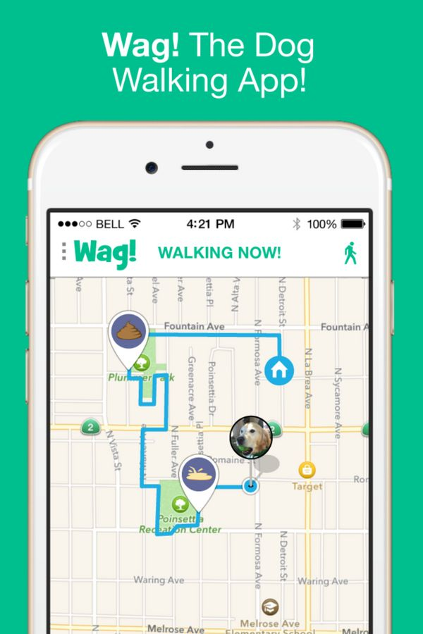 Wag! The dog walking app. 1st walk FREE with code wagwalks