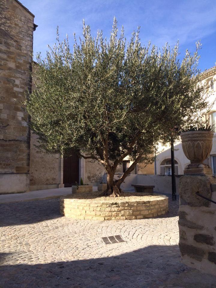 Place de l église saint saturnin