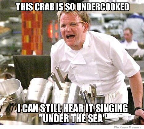 Best Of The Gordon Ramsay Yelling Meme   WeKnowMemes