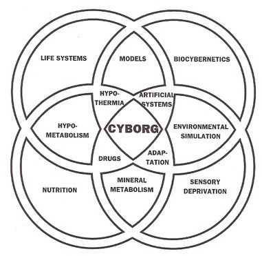 What is a Cyborg? - Cyborg Anthropology