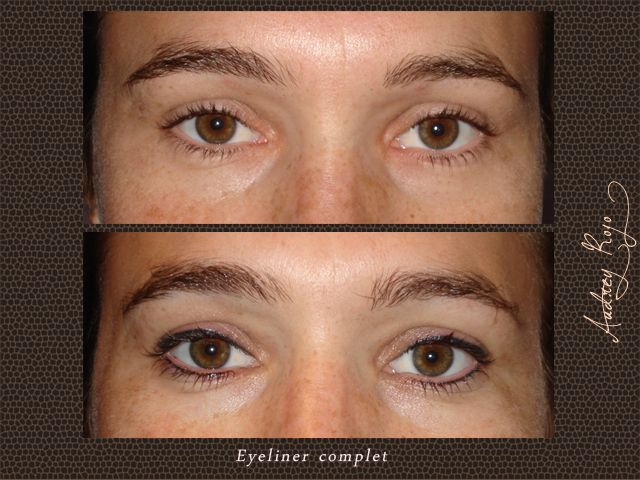 Eyeliner complet maquillage permanent 81 Tarn