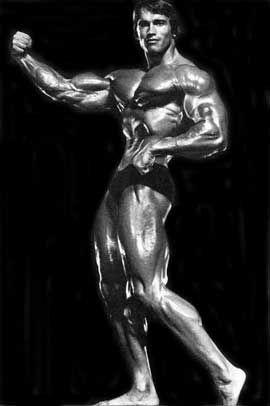 施瓦辛格 肌肉 - Google Search