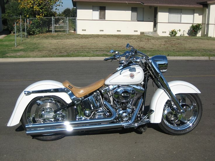 custom harley davidson..I could care less if it's a Harley...I just want something low enough for my short legs and bars I can reach comfortably. But yes, I want my own bike!