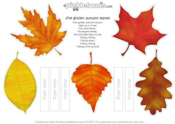 55 best images about leaves on pinterest photosynthesis