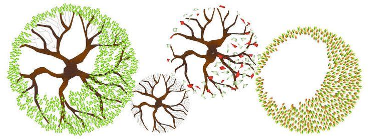 CAD SYMBOLS : COLOUR PLANTS - DECIDUOUS TREES PLAN