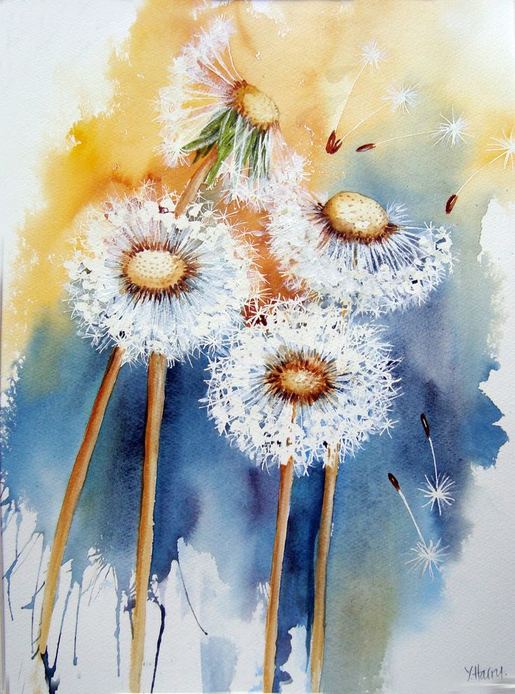 Best 20 dandelions ideas on pinterest for Dandelion flowers and gifts