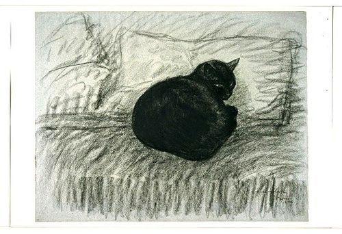 Black Cat  T-A Steinlen