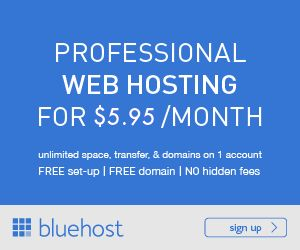 Web Hosting Professionale