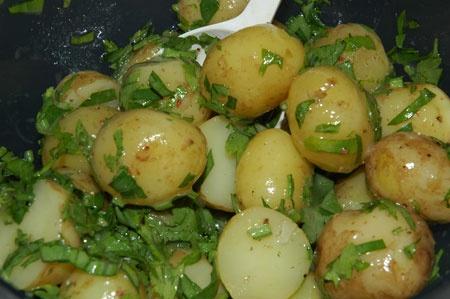 New potatoes - dug up this morning